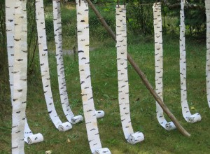 "Cecilia Blomberg, ""Birch Rolls,"" Each of 10: 118"" x 5.5,"" Cotton warp, cotton fabric strips"