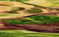 "Bobbi Chamberlain, ""Palouse Sunset' 2010, 26"" x 41"""