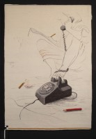 "Sarah Swett, Hang up and Draw, 2008, 54""x36""; $14,000"